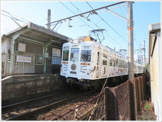 田中口駅とたま電