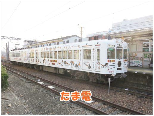和歌山駅たま電